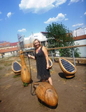 Open Gardens : solar energy to be studied
