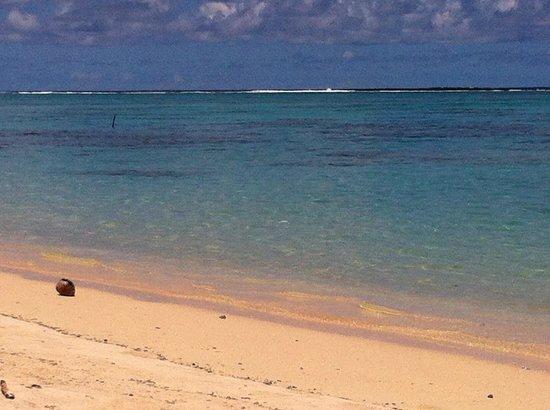 Makayla Palms: Idyllic Beach