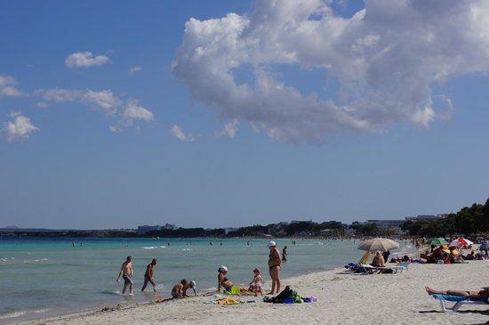 Hotel Roc Boccaccio: Пляж в Алькудии