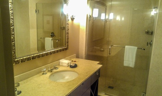 Wyndham Grand Chicago Riverfront : bathroom 1