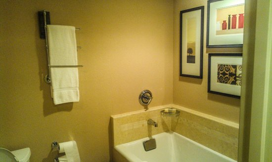 Wyndham Grand Chicago Riverfront: bathroom 2