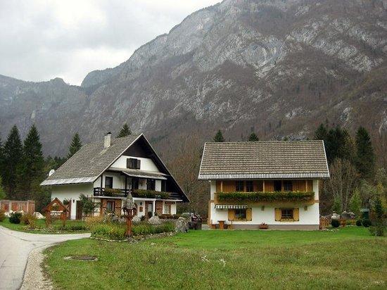 Alpik Apartments at Lake Bohinj : :)