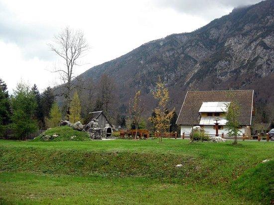 Alpik Apartments at Lake Bohinj: House backyard