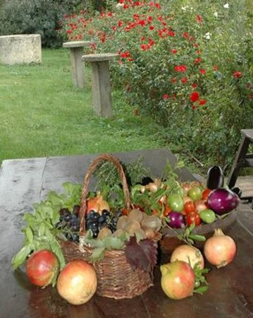 Agriturismo Settimano: Vegetables and fruit from our garden/fields