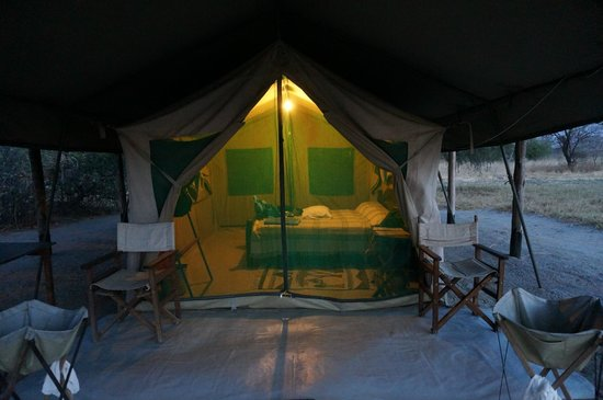 Whistling Thorn Tented Camp : Tent