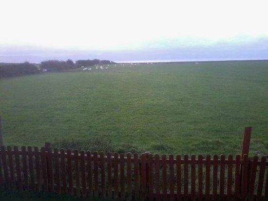 Afonwen Farm: back door view