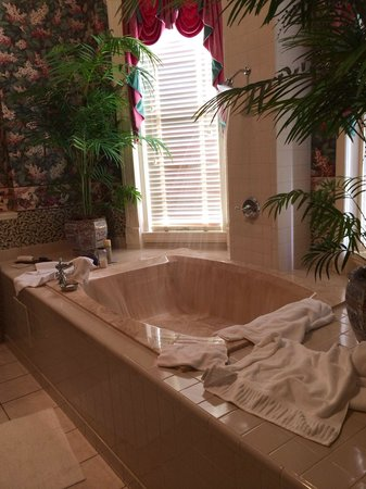 Mayor's Mansion Inn: Giant tub
