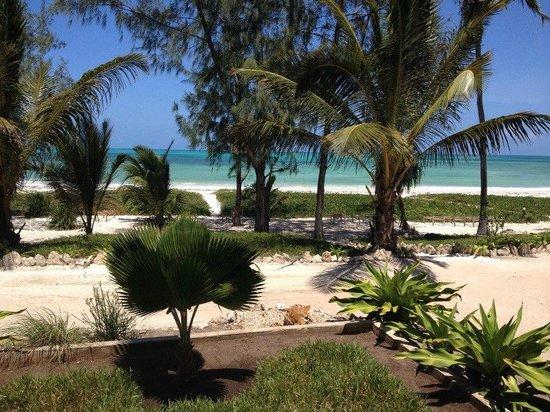 Domokuchu Beach Bungalows: Domokuchu