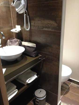 Auberge Flora : small but very clean and nice shower room