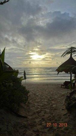 Dos Ceibas Eco Retreat : playita