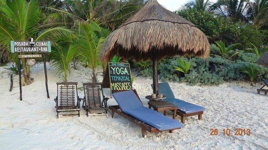 Dos Ceibas Eco Retreat : palapita