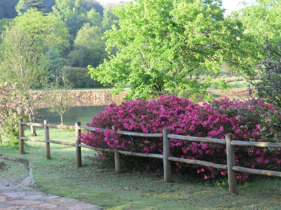 Misty Mountain: Well maintained grounds