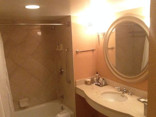 Hilton Columbus at Easton : Bathroom typical of all 3 star hotels this was a 4 star btw