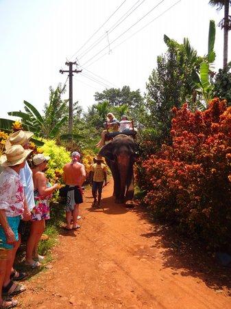 South Goa District, Ινδία: Ride round the sanctuary