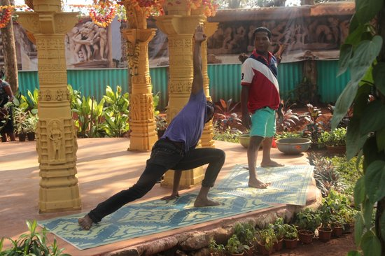 Bhagwan Mahavir Wildlife Sanctuary: Morning Yoga