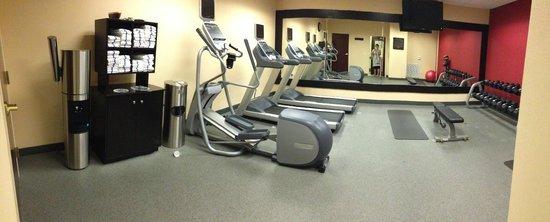 Homewood Suites Houston near the Galleria : Gym