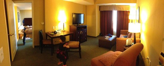 Homewood Suites Houston near the Galleria: Living Area