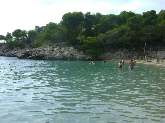 Playa Cala Salada: mare