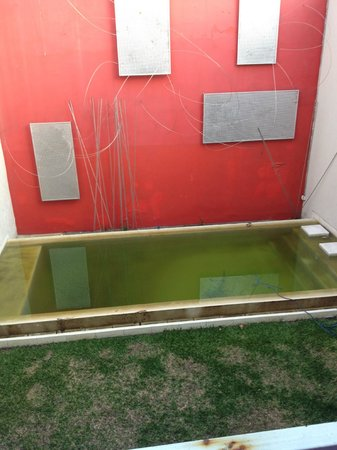Noa Noa Lofts+Art: Piscina sucia