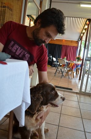 Vienna Inn: And a lost, but very well behaved dog