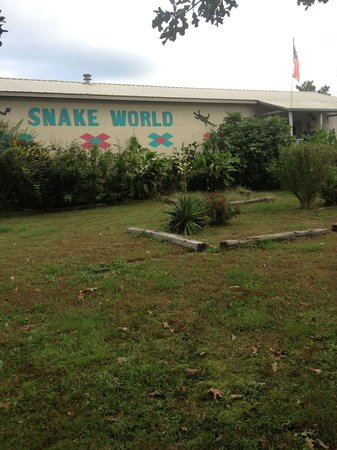 Berryville, AR: Snake World