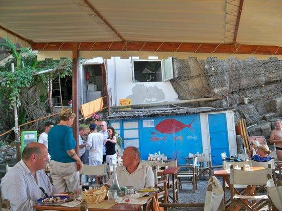 Da Adolfo : Beach Restaurant