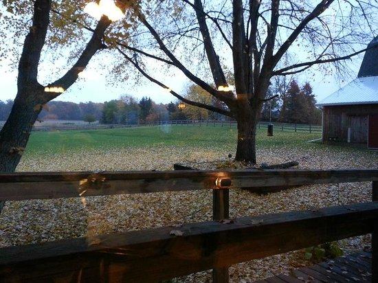 Patchwork Quilt Inn: Backyard
