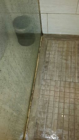 Ramada Plaza Shenzhen North: Dirty!!!