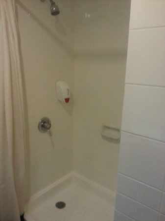 Ibis Jakarta Arcadia : Shower in Standard Room