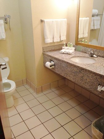 Holiday Inn Express Enterprise: Clean and spacious bathroom