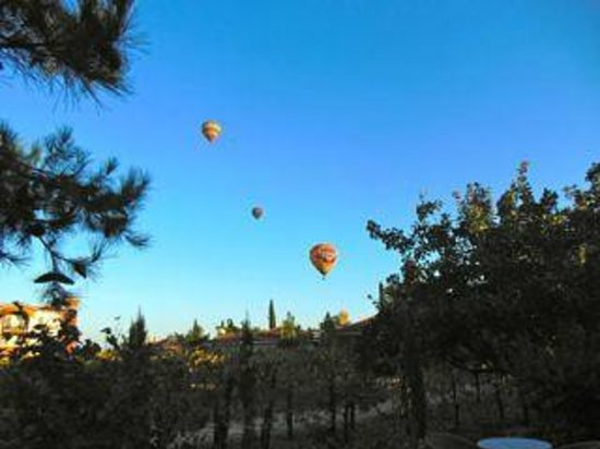 South Coast Winery Resort & Spa : Hot Air Balloons outside our villa over vineyards