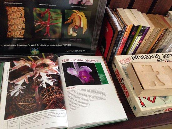 Arundina Cameron Highlands: Reading corner