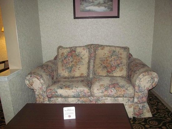 Mockingbird Inn & Suites : couch
