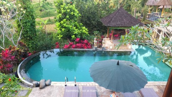 Alam Puri Art Museum & Resort: Brilliant pool always clean never crowded.