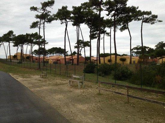 Club Med La Palmyre Atlantique : Vue sur le village depuis chemin pédestre/velo