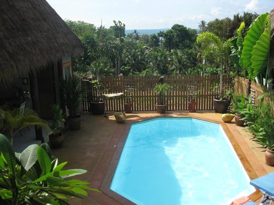 Golden Pool Villas : Pool with view