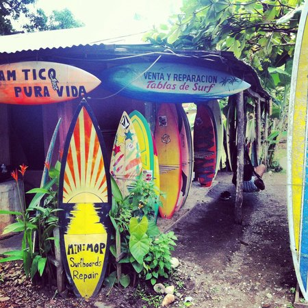 Mini Mop Surf Shop: Renting some boards for my first week of surfing ever.