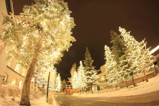 Vail Cascade Resort & Spa: Lit Tree entrance just beautiful