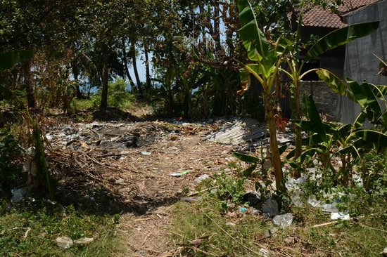 Bali Bhuana Beach Cottages: Garden 2M from Swimming Pool