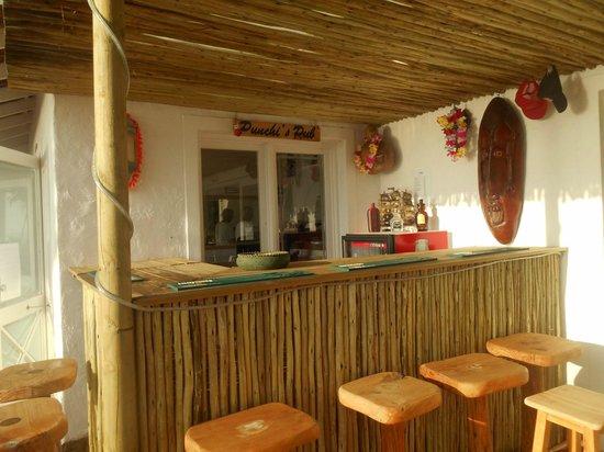 Backpackers Beach House Lodge: Bar