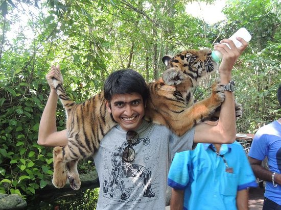 Safari World: Me with a baby tiger