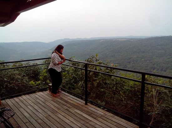 The Machan: view from the canopy