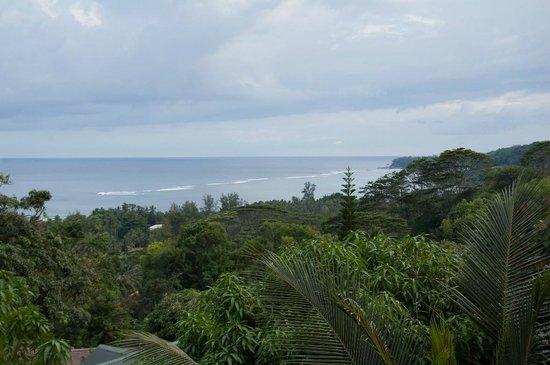 Albizia Lodge Reef Estate : View fron the balcony