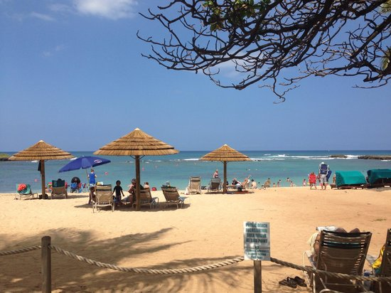 Private Tours Hawaii: One of the many photos from our tour