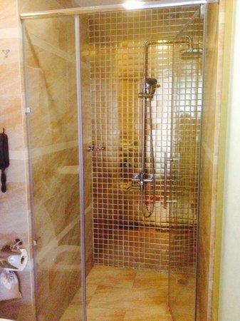 Hanoi Tirant Hotel : Shower