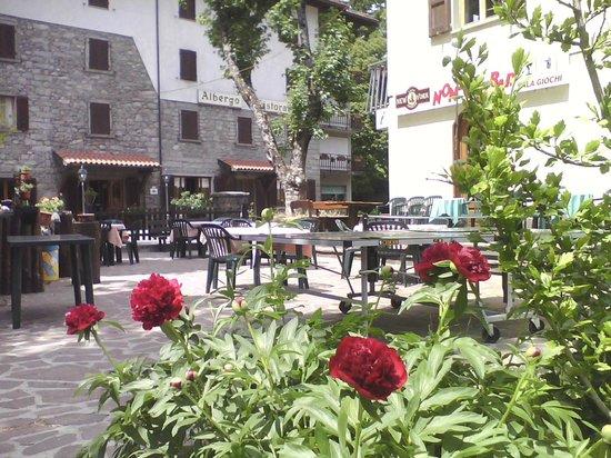 Albergo Sichi: giardino