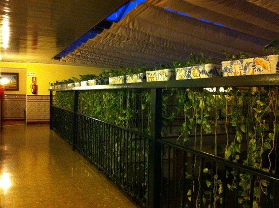 Hotel Sandra : PATIO ANDALUZ