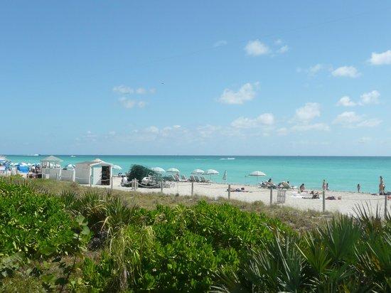 Fontainebleau Miami Beach : vu sur la plage