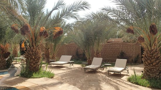 La Rose Du Desert : Piscine
