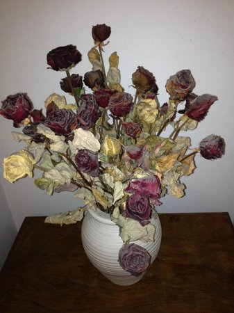 Hotel Medici: dead and dirty flowers used as decoration at a corner next to corridor/staircase